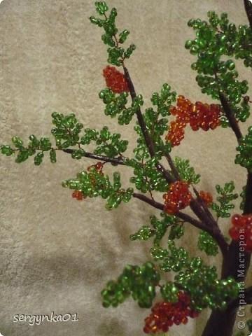 Первая пробная работа - бисерное дерево фото 2