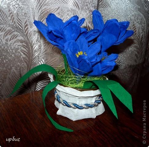 Крокусы для мамы. Сделаны по МК http://stranamasterov.ru/technics/flowers22-23.html. фото 2