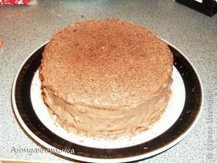 Шоколадно-медовый торт. фото 2