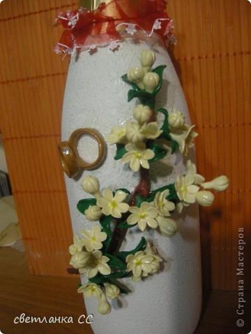 Очень нравиться сакура.Нежные цветы фото 3