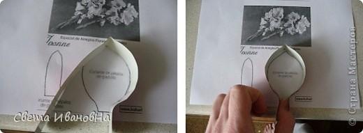 Берем консервную банку (у меня от томатной пасты), открывалкой делаем безопасный край (чтоб не порезаться), вырезаем дно. фото 5