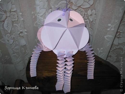 мои осьминоги фото 3