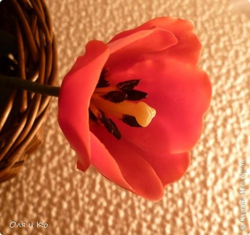 Представляю на ваш суд свой первый цветок из самоварного холодного фарфора. Лепила по МК с сайта Валентины http://www.clayart.com.ua/index.php?option=com_kunena&func=view&catid=5&id=175&Itemid=42 . Низкий поклон этой талантливой и щедрой мастерице. До ее цветов мне очень далеко, но я буду стараться. Все каттеры и молды, которые я использовала самодельные - спасибо Юле за то, что учит проявлять смекалку во всем http://stranamasterov.ru/node/138936 . Ну и, конечно, отдельное спасибо Светлане за идеальный рецепт http://stranamasterov.ru/node/142186 . Хоть масса и получилась с комочками, это оказалось вполне решаемо (спасибо, девочки, за подсказку http://stranamasterov.ru/node/174489 ). фото 3