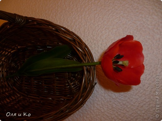 Представляю на ваш суд свой первый цветок из самоварного холодного фарфора. Лепила по МК с сайта Валентины http://www.clayart.com.ua/index.php?option=com_kunena&func=view&catid=5&id=175&Itemid=42 . Низкий поклон этой талантливой и щедрой мастерице. До ее цветов мне очень далеко, но я буду стараться. Все каттеры и молды, которые я использовала самодельные - спасибо Юле за то, что учит проявлять смекалку во всем http://stranamasterov.ru/node/138936 . Ну и, конечно, отдельное спасибо Светлане за идеальный рецепт http://stranamasterov.ru/node/142186 . Хоть масса и получилась с комочками, это оказалось вполне решаемо (спасибо, девочки, за подсказку http://stranamasterov.ru/node/174489 ). фото 2