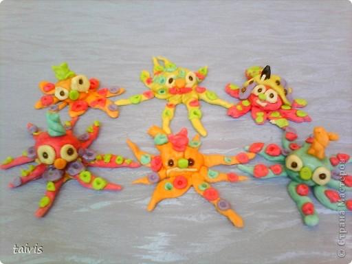 Разноцветные осьминоги. фото 1
