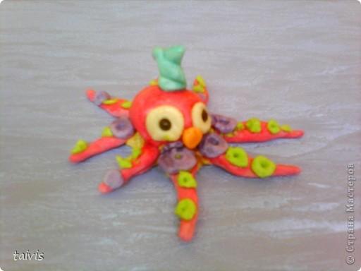 Разноцветные осьминоги. фото 2