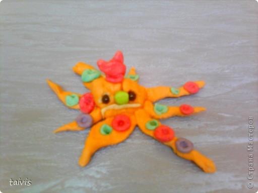 Разноцветные осьминоги. фото 3