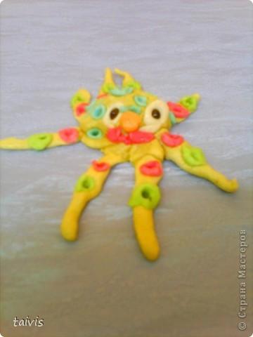 Разноцветные осьминоги. фото 6