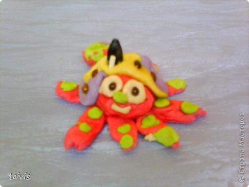 Разноцветные осьминоги. фото 7