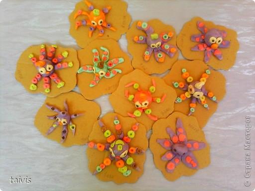 Разноцветные осьминоги. фото 8