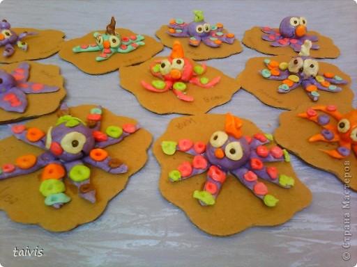 Разноцветные осьминоги. фото 9