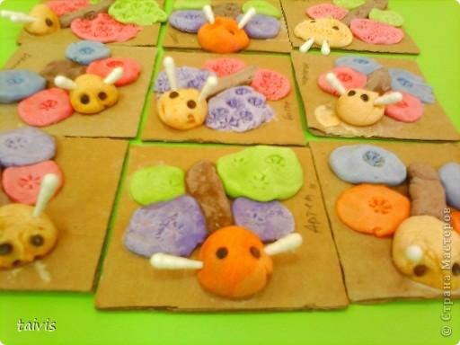 Разноцветные осьминоги. фото 10