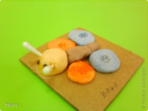 Разноцветные осьминоги. фото 12