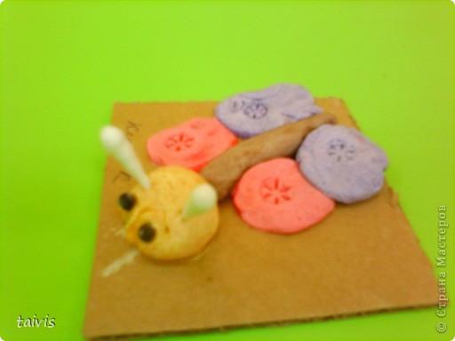 Разноцветные осьминоги. фото 13
