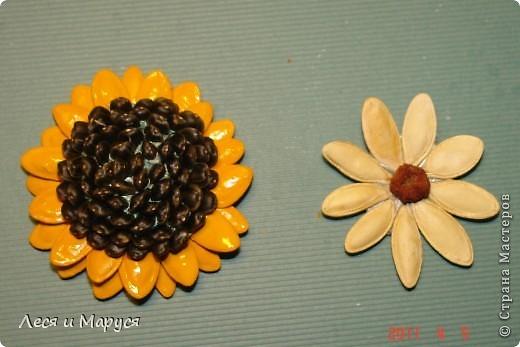 Цветы и подсолнух из тыквенных семечек фото 1
