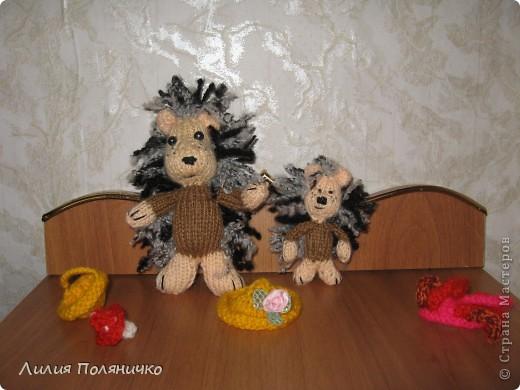 Вот такие чудесные Ёжики связались у меня на он-лайне сайта амигуруми фото 2