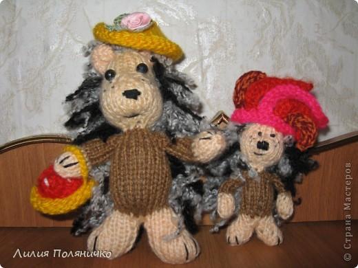 Вот такие чудесные Ёжики связались у меня на он-лайне сайта амигуруми фото 1