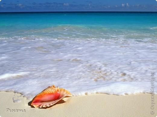 Первая: Море...волны... и только небольшая полоска далекого острова, где раскинулось невиданное дерево... фото 4