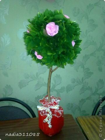 Деревце с розами фото 3