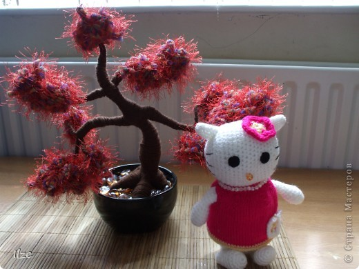 Hello, Kitty i bonzai
