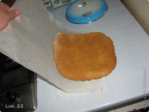 Этот торт внутри медовик. А так как на улице весна, решила оформить в таком духе. фото 22