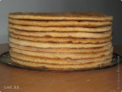 Этот торт внутри медовик. А так как на улице весна, решила оформить в таком духе. фото 25