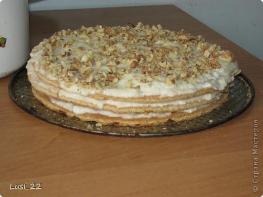 Этот торт внутри медовик. А так как на улице весна, решила оформить в таком духе. фото 42