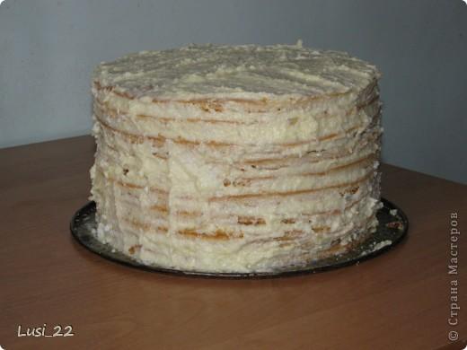 Этот торт внутри медовик. А так как на улице весна, решила оформить в таком духе. фото 43