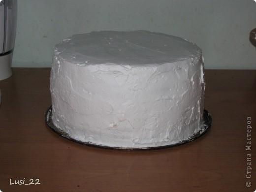 Этот торт внутри медовик. А так как на улице весна, решила оформить в таком духе. фото 49