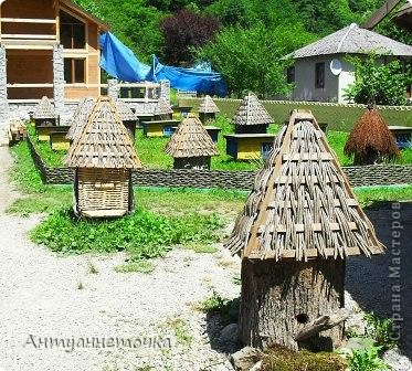"""Абхазия - страна души (""""Апсны""""). Эта страна с прекрасным климатом и пейзажем, интересными достопримечательностями. Абхазия поражает своей буйной и разнообразной растительностью. 2-3 ее территории занимают горы. фото 49"""