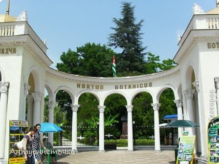 """Абхазия - страна души (""""Апсны""""). Эта страна с прекрасным климатом и пейзажем, интересными достопримечательностями. Абхазия поражает своей буйной и разнообразной растительностью. 2-3 ее территории занимают горы. фото 12"""
