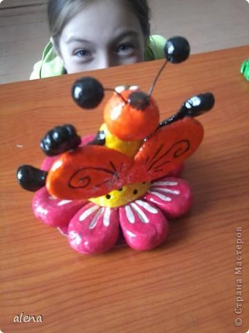 пчелки фото 3