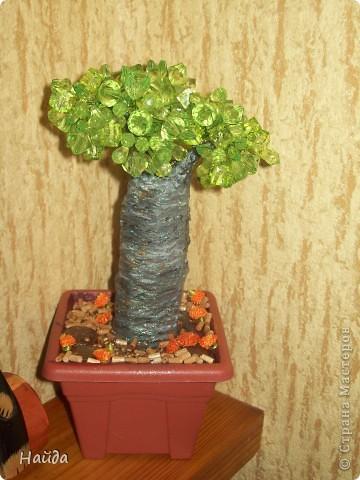 купила по случаю бусинки. захотелось сделать баобаб,но на крону надо много зелени, значит делаю бутылочное дерево фото 1