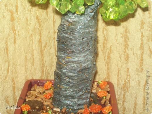 купила по случаю бусинки. захотелось сделать баобаб,но на крону надо много зелени, значит делаю бутылочное дерево фото 2