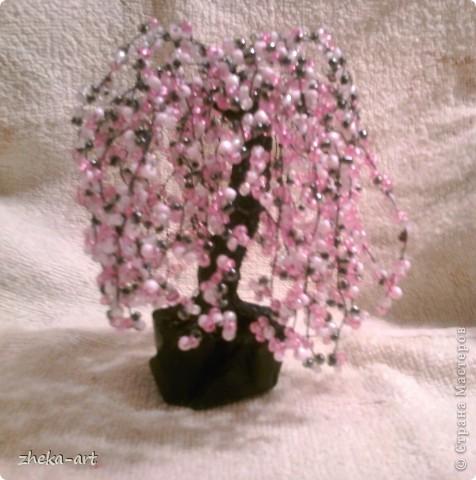 А это самое первое мое деревце, которое я сплела фото 2