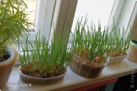 Весна в моей группе. Спасибо Лике 2010 за ее МК  http://stranamasterov.ru/user/20323  фото 20