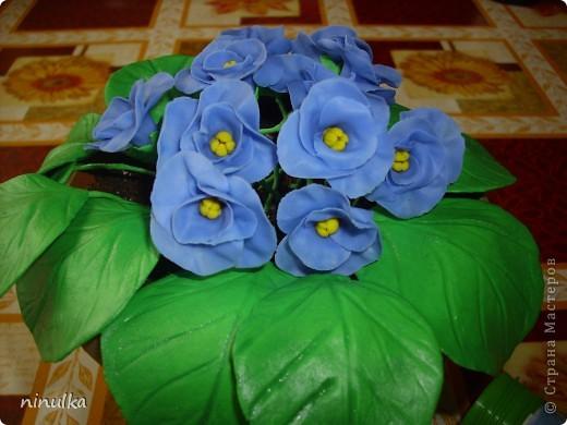 Наконец-то у меня получился ХФ. Это мои первые цветочки. Проблема с листочками, их блеск выдаёт. Буду стараться, надеюсь следующие у меня будут лучше. фото 1