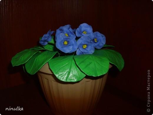 Наконец-то у меня получился ХФ. Это мои первые цветочки. Проблема с листочками, их блеск выдаёт. Буду стараться, надеюсь следующие у меня будут лучше. фото 2