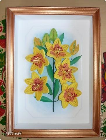 Жёлтые лилии.