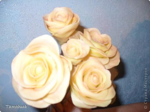 мои первые цветочки