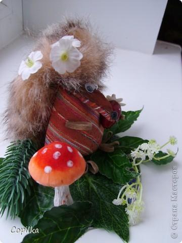 """Эти игрушки появились благодаря идее,которую """"подкинула"""" мне Лиля Приветик -  http://stranamasterov.ru/node/176344 фото 8"""