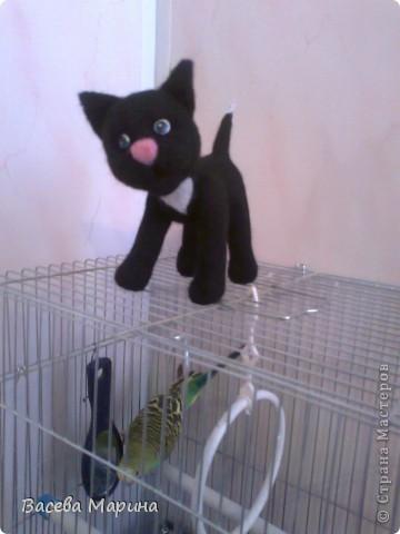 Сваляла я вот такого котика , зовут его Пират. фото 2