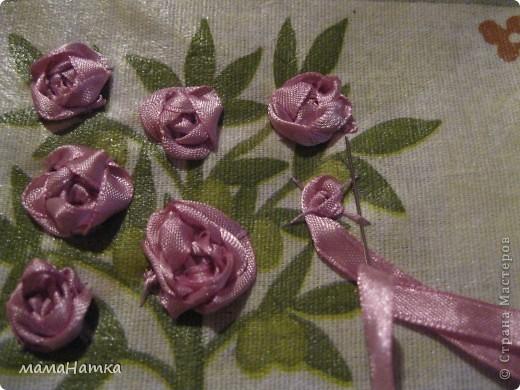 в розовый куст фото 4