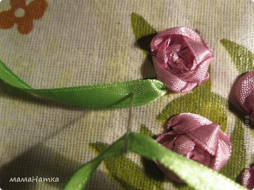 в розовый куст фото 5