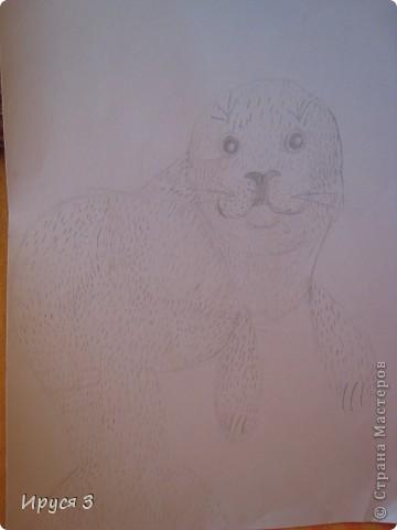 Кошечек Марина шила и рисовала мордочки  сама , я только помогла обвести контур . фото 9
