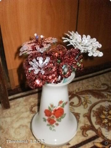 Очень захотелось иметь дома маленькую рябинку.Красивое дерево ,особенно осенью с красными ягодками. фото 5