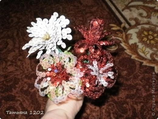 Очень захотелось иметь дома маленькую рябинку.Красивое дерево ,особенно осенью с красными ягодками. фото 9
