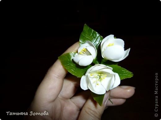 бутоньерка жасмин. фото 1