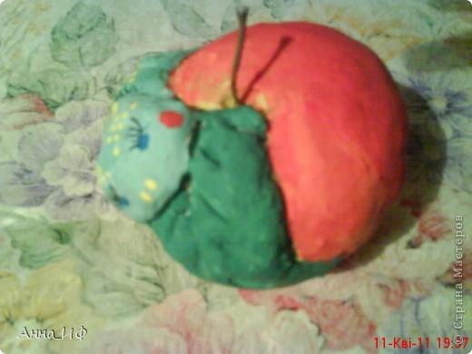 Яблоко фото 1