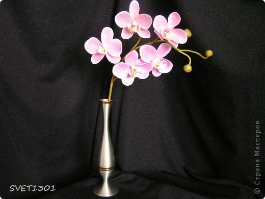 Вот и я отважилась на орхидею Phalaenopsis. Долго откладывала её лепку, так как думала, что она сложна в исполнении. Пересмотрела разные МК, но мне не подошёл ни один, т.е. так ,как делают другие мастера, я не смогла. Но как только решила сделать по своему- сразу всё получилось (мне так кажется). Представляю на Ваш суд результат моих мучений. фото 4
